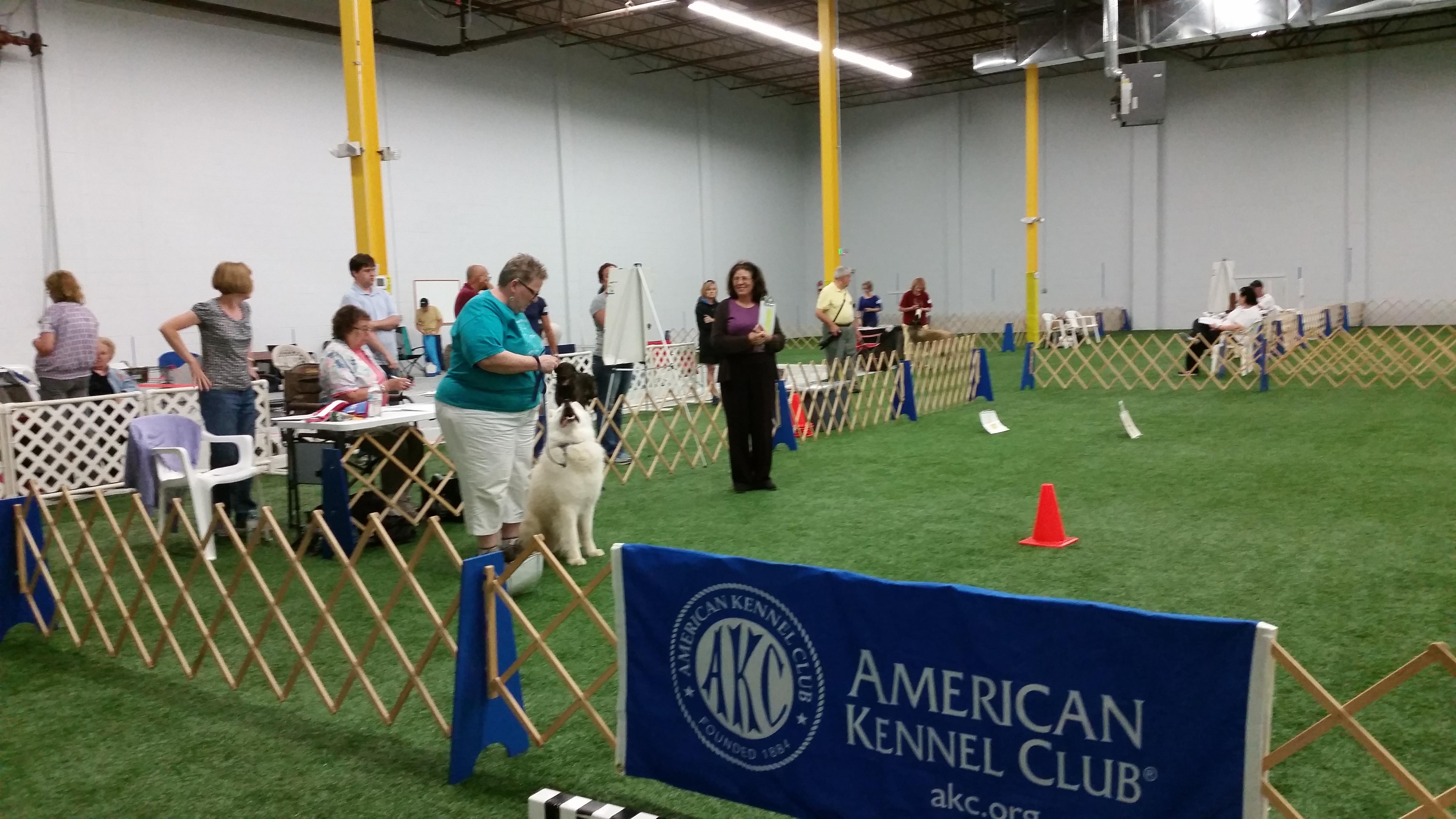 Events Calendar - AKC Coonhounds