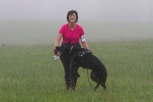 Donna Murray with her Black German Shepherd Laelia, celebrating their TD pass. This photo was taken at the German Shepherd Tracking Test held in fall 2013 at Fair Hill, MD. Diane Reich is an Oriole member; Nancy Skinner, an Oriole member, was the Chief Tracklayer, and a number of Oriole students and instructors were there as working volunteers. As is the case in the local tracking community, members of the German Shepherd Club came to help with the 2014 Oriole Tracking Test also at Fair Hill.
