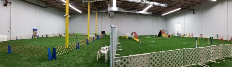 Here is what the sports field looks like when set up for nighttime class split between obedience and agility