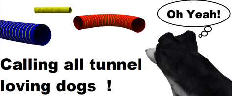 Tunnellers