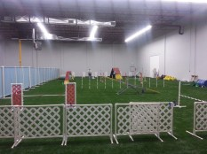 Agility Training Ring on the right half of the sports field