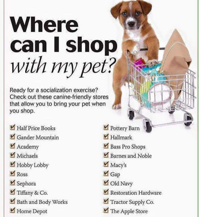 WhereCanIShopWithMyPet