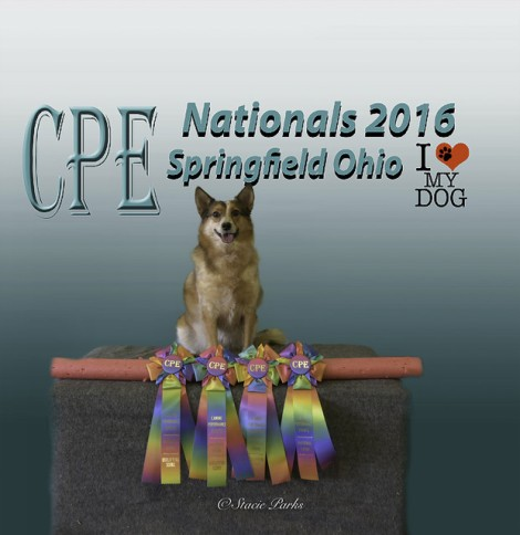 Keanu showing off some of his accomplishments from the 2016 CPE Nationals