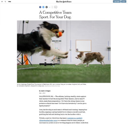 tmp_May2018NYTFlyballArticle