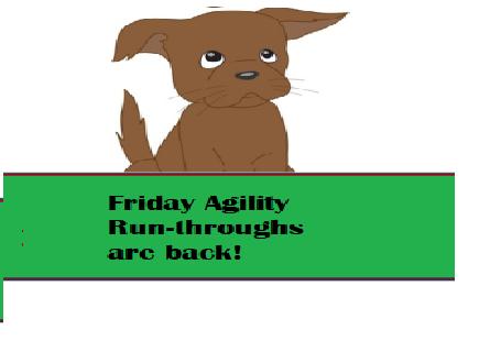 Agility run-throughs are back!